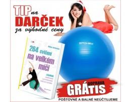 Akcia 264 cvičení na velkém míči + Lopta Fitball III - Gymnastická lopta 55 cm vrátane pumpičky