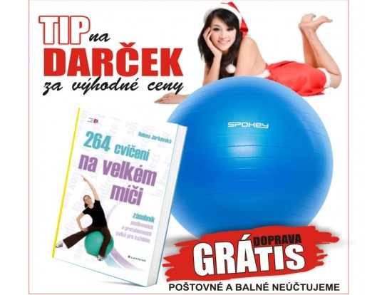 Akcia 264 cvičení na velkém míči + Lopta Fitball III - Gymnastická lopta 65 cm vrátane pumpičky