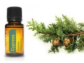 Cyprusový esenciálny olej  15ml