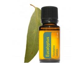 Eukalyptový esenciálny olej 15ml